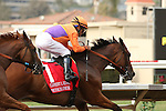 """DEL MAR, CA  JULY 30:#1 Beholder and Gary Stevens take the early lead in the Clement L. Hirsch Stakes (Gl) """"Win and You're in Breeders' Cup Distaff Division"""" at Del Mar Turf Club in Del Mar, CA on July 30, 2016. (Photo by Casey Phillips/Eclipse Sportswire/Getty Images)DEL MAR, CA  JULY 30: #2 Stellar Wind with Victor Espinoza beat Beholder and Gary Stevens in the Clement L. Hirsch Stakes (Gl) """"Win and You're in Breeders' Cup Distaff Division"""" at Del Mar Turf Club in Del Mar, CA on July 30, 2016. (Photo by Casey Phillips/Eclipse Sportswire/Getty Images)"""