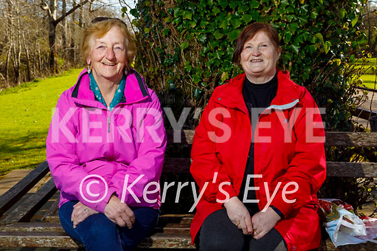 Enjoying a sit down after a stroll at Ross Castle in Killarney on Saturday, l to r: Sheila O'Donovan and Mary O'Sullivan.