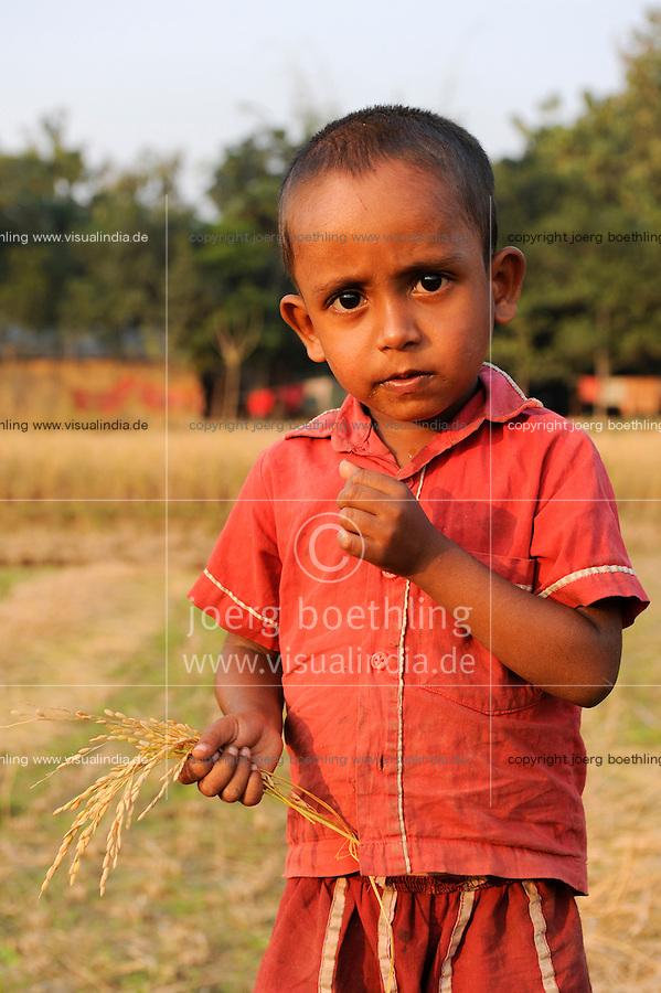 Bangladesh, Region Madhupur , Junge mit Reishalm vor Reisfeld / BANGLADESH Madhupur, boy hold rice crops after harvest