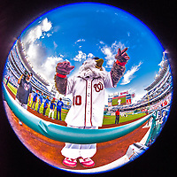 15 August 2017: Washington Nationals Mascot Screech entertains fans prior to a game against the Los Angeles Angels at Nationals Park in Washington, DC. The Nationals defeated the Angels 3-1 in the first game of their 2-game series. Mandatory Credit: Ed Wolfstein Photo *** RAW (NEF) Image File Available ***