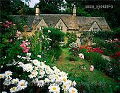 Tom Mackie, FLOWERS, photos, Cottage Garden, Bibury, Gloucestershire, England, GBTM990428-3,#F# Garten, jardín