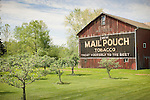New Berlin Ohio, Route 224. Barn with Mail Pouch Tobacco signage.