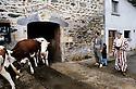 France 1989.Kurdish Iraqi immigrants visiting a farm in Auvergne.France 1989.Immigrants kurdes irakiens visitant une ferme en Auvergne