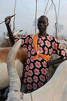 Afrika SUED-SUDAN  Bahr el Ghazal region , Lakes State, Dinka Hirten mit Zeburindern im cattle camp  | Africa SOUTH SUDAN  Bahr al Ghazal region , Lakes State, Dinka shepherd with Zebu cow in cattle camp