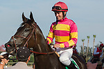 """ARCADIA, CA. SEPTEMBER 30:  #5 Avenge, ridden by Flavien Prat,wins the Rodeo Drive Stakes (Grade l) """"Win and You're In Filly and Mare Turf Division"""" on September 30, 2017 at Santa Anita Park in Arcadia, CA.(Photo by Casey Phillips/Eclipse Sportswire/Getty Images)"""