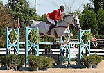 12 July 2009: Bruce Davidson Sr. riding Cruise Lion during the showjumping phase of the CIC 3* Maui Jim Horse Trials at Lamplight Equestrian Center in Wayne, Illinois.