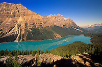 Scenic view of Peyto Lake, Banff National Park, Alberta, Canada.