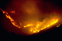 Pictured: Fire raging in a valley.<br /> Re: A forest fire has been raging in the area of Kalamos, 20 miles east of Athens in Greece. There have been power cuts, country houses burned and children camps evacuated from the area.