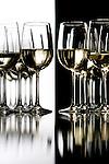 Wine taste test.  California wines vs. Colorado wines.  Denver May 3, 2007.   NOT a photo illustration. (ELLEN JASKOL/ROCKY MOUNTAIN NEWS)