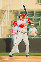 Shawn Pleffner (29) of the Hagerstown Suns at bat against the Kannapolis Intimidators at CMC-Northeast Stadium on May 17, 2013 in Kannapolis, North Carolina.  The Suns defeated the Intimidators 9-7.   (Brian Westerholt/Four Seam Images)