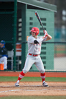 Ryan Karl (17) of the Cornell Big Red at bat against the Seton Hall Pirates at The Ripken Experience on February 27, 2015 in Myrtle Beach, South Carolina.  The Pirates defeated the Big Red 3-0.  (Brian Westerholt/Four Seam Images)