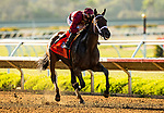 AUGUST 01, 2021: Shedaresthedevil with Florent Geroux was the Clement L. Hirsch Stakes  at Del Mar Fairgrounds in Del Mar, California on August 01, 2021. Evers/Eclipse Sportswire/CSM