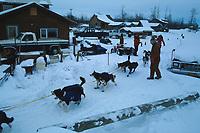 R.Mackey Galena Checkpoint Iditarod 1992 winter