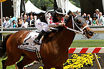 May 17, 2014: Happy My Way with Joe Bravo win the 28th running of the Grade III Maryland Sprint Handicap, for 3-year olds & up, going 6 furlongs at Pimlico Racetrack. Trainer: Joseph Orseno. Owner: Sagamore Farm &  MelPalkoff . Sue Kawczynski/ESW/CSM