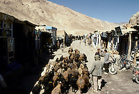Sheeps in Gardan Dival Bazaar on the road to Bamiyan from Kabul..The Kuh e Baba mountain range at 5100 meters High. Afghanistan.
