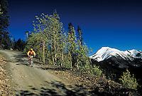 (MR) mountain biking, Summit County, CO. Evan Wert (MR). Summit County, Colorado.