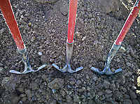 Three red-handled shovels at gravesite at cemetery. From Verizon Droid camera.