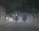 8.17.10 Horses come off the Oklahoma Training Track
