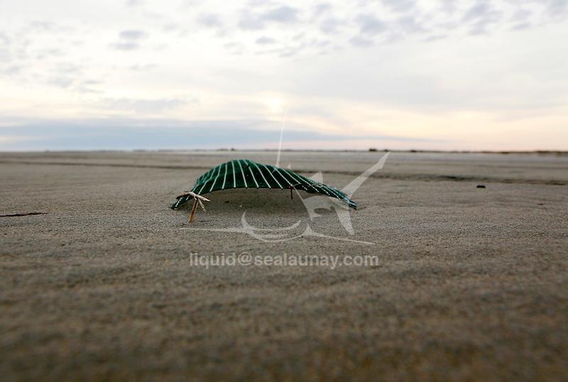 Coastline pollution at Napoleon Beach , Port-Saint-Louis du Rhone, Bouches-du-Rhône, France.