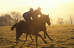 Kate Sellars and Claire Byrns Morning gallops Lower Moor Middleham Yorkshire.