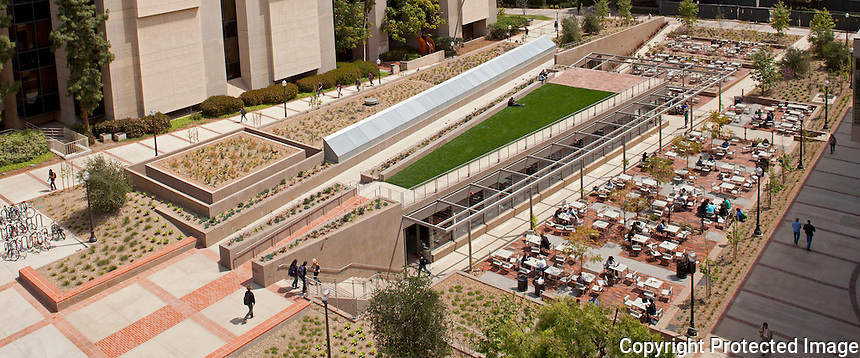 UCLA Court of Sciences Student Center, Los Angeles, completed in 2012. Consists of new dining facility, spaces for study and socialization. Outdoor gardens and indoor-outdoor seating areas in a natural setting provide respite from the hard environment of surrounding urban context. Taal Safdie, architect. Photo by Undine Prohl.