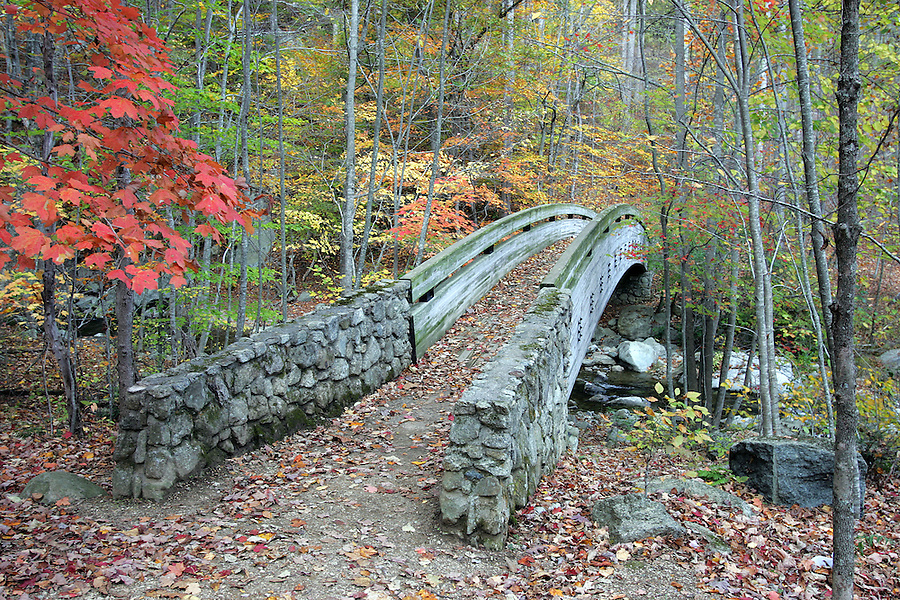 Wooden bridge at Crab Tree falls in Nelson County, Va.