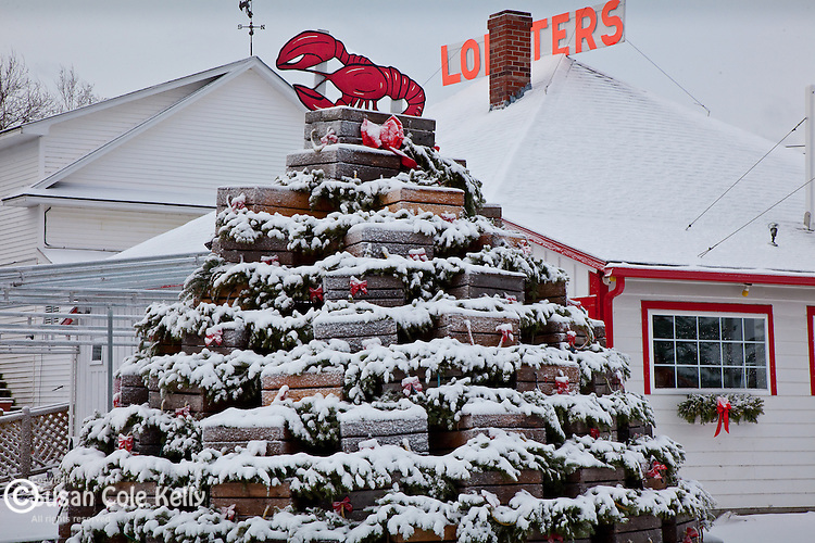 Lobster trap Christmas tree in Trenton, Downeast, ME