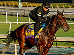 October 26, 2019 : Breeders' Cup Classic entrant McKinzie, trained by Bob Baffert, exercises in preparation for the Breeders' Cup World Championships at Santa Anita Park in Arcadia, California on October 26, 2019. Scott Serio/Eclipse Sportswire/Breeders' Cup/CSM