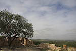 Hurvat Tzura in the Shephelah