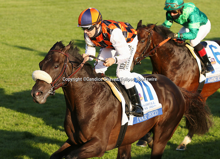 """Octover 03, 2020 : #11 Ivar (BRZ) and jockey Joseph Talamo win the 35th running of The Shadwell Turf Mile (Grade 1) $750,000 """"Win and You're In Breeders' Cup Mile Division"""" for owner Bonnie Chance Farm and Stud RDI and trainer Paulo Lobo at Keeneland Racecourse in Lexington, KY on October 03, 2020.  Candice Chavez/ESW/CSM"""