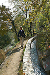 Italy, South Tyrol, Alto Adige, Val Venosta; hiking along the Waale, old feeders