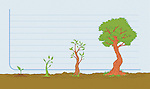 Illustrative image of tree growing on graph representing business growth