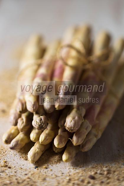 Europe/France/Aquitaine/40/Landes: Asperges des sables des Landes, IGP Indication Géographique Protégée //  France, Landes, asparagus sands of the Landes, PGI Protected Geographical Indication,