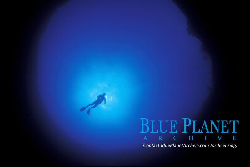 Great blue hole, off Paradise Island, Bahamas