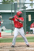 Courtney Hawkins - Cincinnati Reds 2019 spring training (Bill Mitchell)