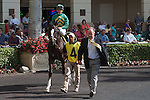 Honor Code, the pre-race favorite had his 2014 debut spoiled when he ran a distant second to Social Inclusion in a 3 year old allowance at Gulfstream Park, Hallandale Beach Florida. 03-12-2014