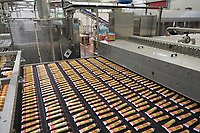 ITALY, Parma, Basilicanova, tomato canning company Mutti s.p.a., founded 1899, fresh plum tomatoes are conserved as tomato concentrate in tube / ITALIEN, Parma, Basilicanova, Tomatenkonservenfabrik Firma Mutti spa, die frisch geernteten Flaschentomaten werden zu Tomatenmark verarbeitet und konserviert, alles 100 Prozent Italien, Abfüllung Tomatenkonzentrat in Tuben