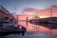 Concordia, Libertad, Mircea & Sagres & Capitan Miranda, Tall Ships, Fish Pier,  Boston Harbor, Boston, MA Seaport