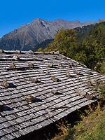 Leiter Alm, Algund bei Meran, Region Südtirol-Bozen, Italien, Europa<br /> Leiter Alm, Lagundo near Merano, Region South Tyrol-Bolzano, Italy, Europe