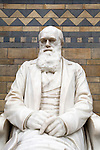 Grossbritannien, England, London, Kensington, Natural History Museum: Statue von Charles Darwin | Great Britain, England, London, Kensington, Grossbritannien, England, London, Kensington, Natural History Museum: Statue of Charles Darwin in the central hall of museum