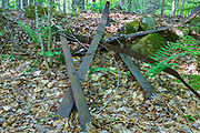 Old sled runners (part of a logging sled) at logging Camp 16 of the East Branch & Lincoln Railroad (1893 -1948) in the Pemigewasset Wilderness in Lincoln, New Hampshire USA. These sled runners are considered artifacts. And the removal of historic artifacts from federal lands without a permit is a violation of federal law.