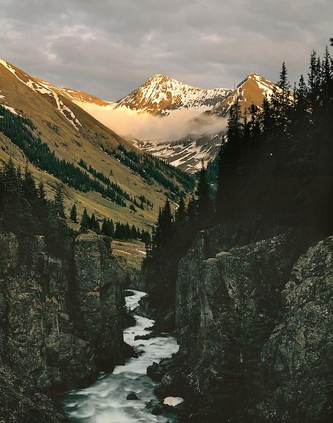 Las Animas River in the San Juan Mountains, Silverton, Colorado, USA .  John leads wildflower photo tours into American Basin and throughout Colorado. All-year long. .  John leads private photo tours throughout Colorado. Year-round Colorado photo tours.