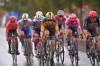 Wout van Aert (BEL/Jumbo - Visma) in the lead group<br /> <br /> 82nd Gent-Wevelgem in Flanders Fields 2020 (1.UWT)<br /> 1 day race from Ieper to Wevelgem (232km)<br /> <br /> ©kramon