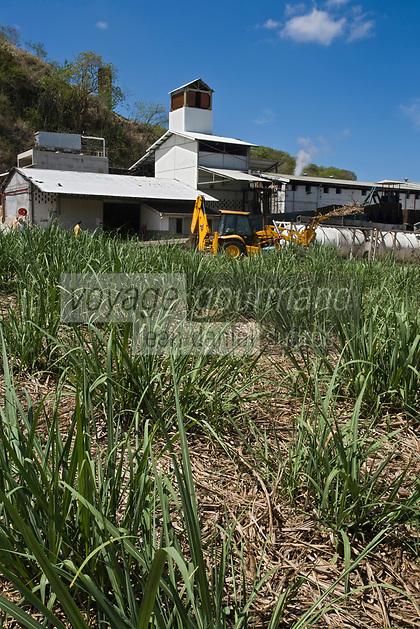 France/DOM/Martinique/ Saint-Pierre:  Distillerie Neisson vue depuis le schamps de canne à sucre -Rhum AOC de la Martinique