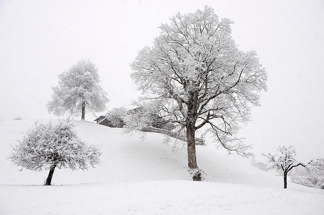 Grindelwald in the winter snow - Swiss alps - Switzerland.
