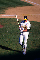OAKLAND, CA - Mark McGwire of the Oakland Athletics in action at the Oakland Coliseum in Oakland, CA in 1995. Photo by Brad Mangin