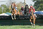 25 Apr 2009: Perkedinthesand (1st) , ridden by Jeff Murphy; Tatjana's Salute (4th), ridden by Richard Spate; Moon Dolly (2nd), ridden by James Slater; Straight to Court, ridden by Carl Rafter in the Daniel Van Clief Memorial filly and mare allowance hurdle race at the Foxfield Races in Charlottesville, Virginia. Perkedinthesand is owned by Mrs. S. K. Johnston, Jr and trained by Jack Fisher.