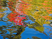 """Nature's Finger-Painting""<br />