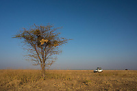 Field work in Ali Deghe, Ethiopia