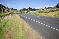 Roadside Scenery, Highway 12, between Paihia and Hokianga, north island, New Zealand.